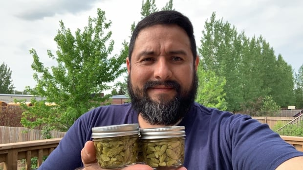 This man picks and pickles spruce tips. Here's how
