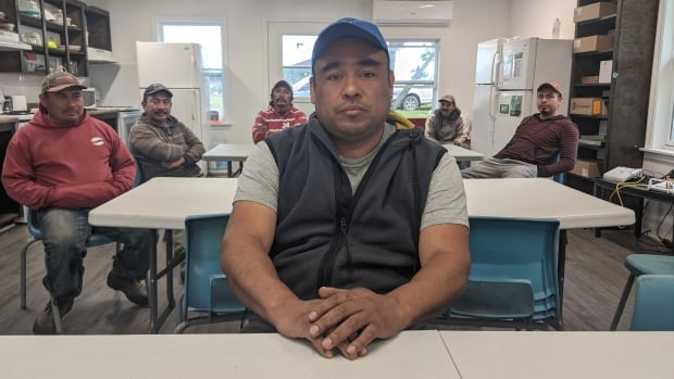 Farmers, fish processors reject report on foreign workers' living conditions