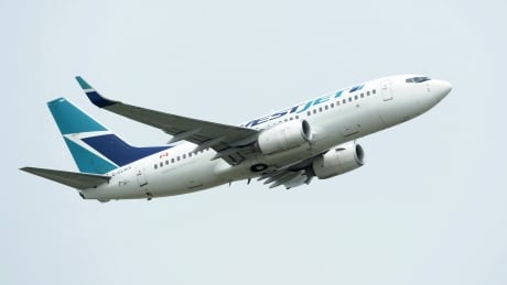 COVID Flight Fines 20200904