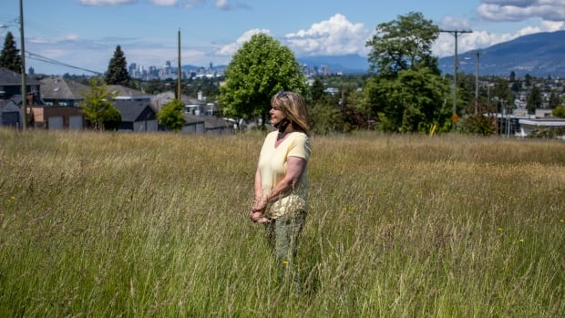 Overgrown grass in East Vancouver park meant to attract bees is attracting complaints too