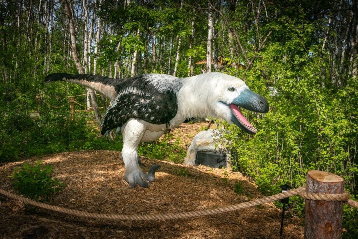 https://i.cbc.ca/1.6062309.1623427286!/fileImage/httpImage/image.jpg_gen/derivatives/original_1180/dakotaraptor-assiniboine-park-zoo-dinosaurs-uncovered-exhibit.jpg