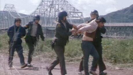 Salmon raids 1981