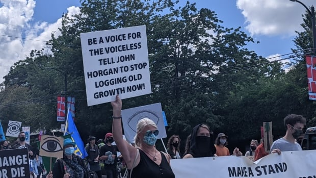 Climate change protesters in Vancouver block intersection, call for end to old-growth logging   CBC News