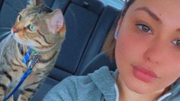 Ottawa police investigate 'disturbing' deaths of 4 cats | CBC News