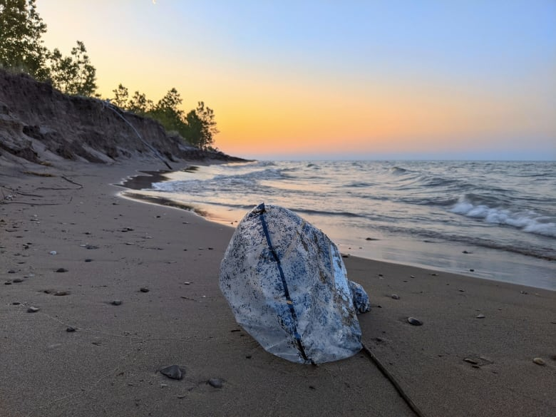 Biologist estimates helium balloons are ending up in Great Lakes by the hundreds of thousands