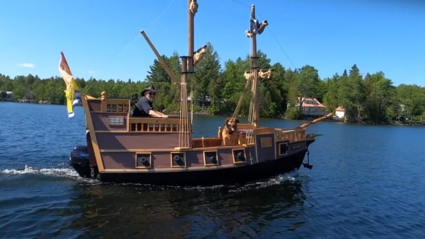 Retired carpenter builds custom pirate ship as pandemic project   CBC News