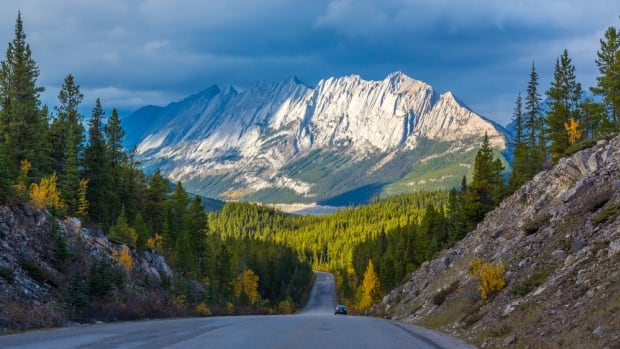 Most provinces didn't come close to meeting 2020 conservation targets, report says