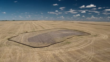 Construction begins on huge new Alberta solar farm, Amazon to purchase power