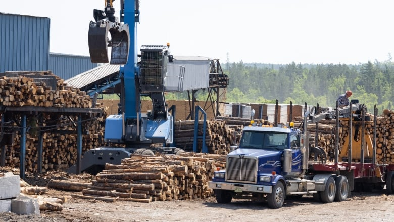 , Pandemic lumber boom burnt itself out — and consumers poised to benefit now | CBC News,