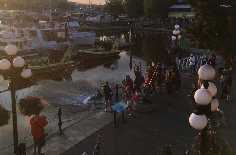 Protesters toss statue of explorer James Cook into Victoria harbour; totem pole later burned