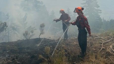 McKay Creek wildfire
