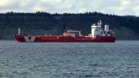 CBS Ship COVID