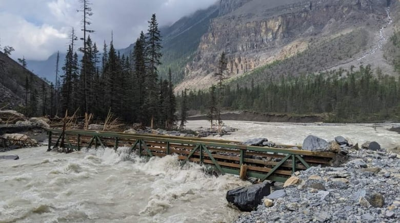 bridge near whitehorn campground on berg lake trail