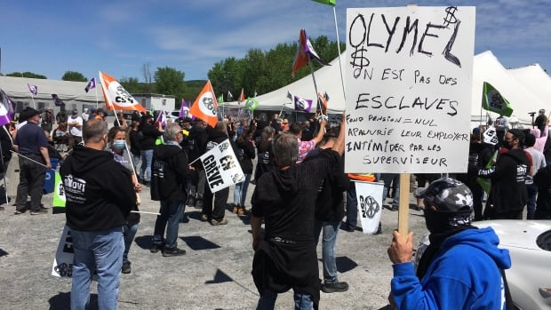 Major labour strikes in Quebec meat industry lead to food waste and demands for change