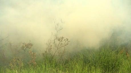 northern wildfires smoke