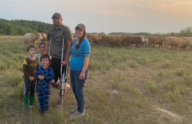 Already battered by drought, Manitoba cattle farmers could face even worse conditions