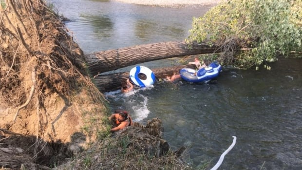 Family rescued after tubing accident pushes them against fallen trees in West Kootenay river
