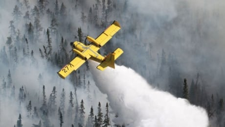 Ontario water bomber