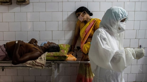 India's COVID-19 death toll could be 10 times the official count, research suggests   CBC News