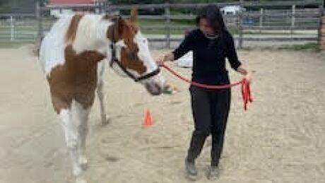 Equine program for women