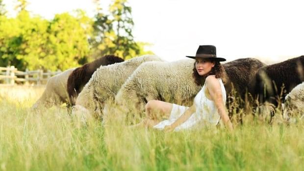 Meet the new shepherd of the famed flock of sheep at Fort Saskatchewan | CBC News