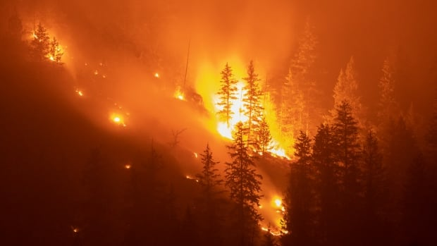 It's not just the smoke — as climate change prompts more wildfires, hidden health risks emerge