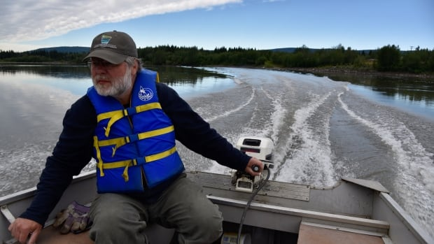 Yukon permafrost thaw reaching 'critical point' in some areas, says researcher | CBC News