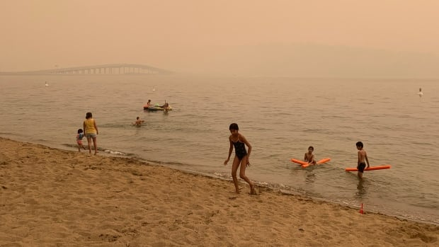 Air quality from wildfire smoke hits dangerous levels across B.C. | CBC News