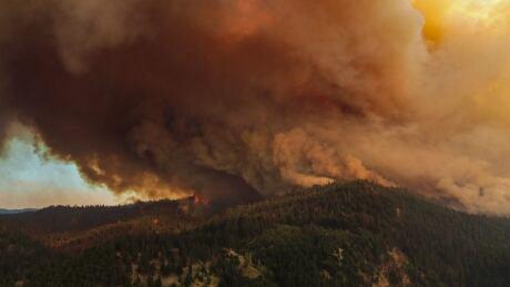 White Rock Lake wildfire