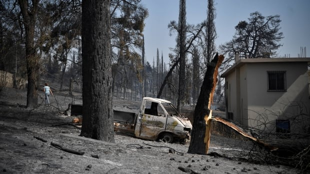 Thousands flee wildfires in Greece, Turkey