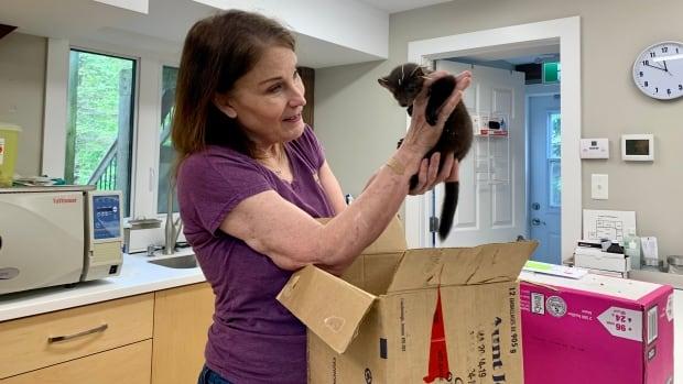 Mother nurturer: Why Hope Swinimer dedicated her life to wild animals