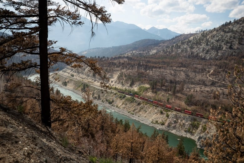 What you need to know about B.C. wildfires for Aug. 19 | CBC News