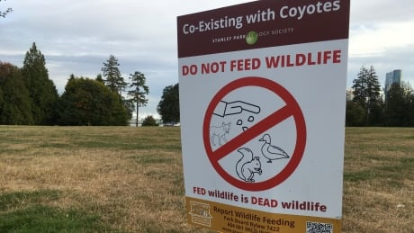 Do not feed wildfire signs Stanley Park