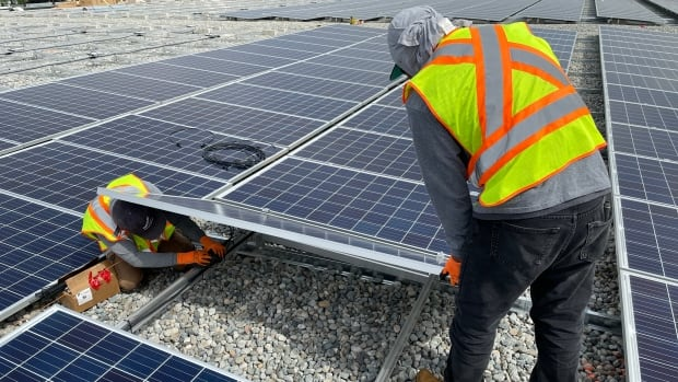 Potential in your rooftop: Solar energy boom keeps installers busy | CBC News