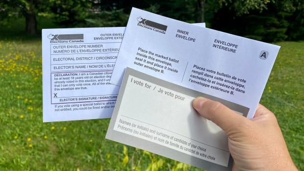 Frustrated with the process, some electors give up hope of voting by mail