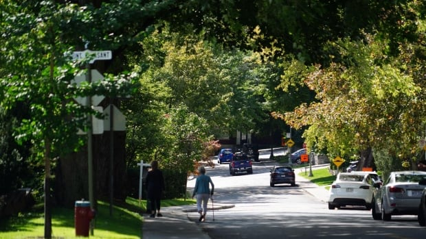 The wealthier, the greener: Why trees are more common in higher-income neighbourhoods