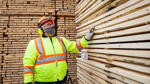 Pandemic lumber boom burnt itself out — and consumers poised to benefit now | CBC News
