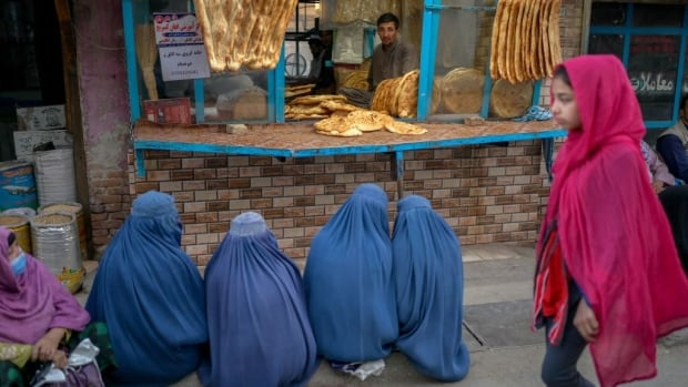 Taliban sets up 'virtue' ministry at former site of women's affairs department   CBC News