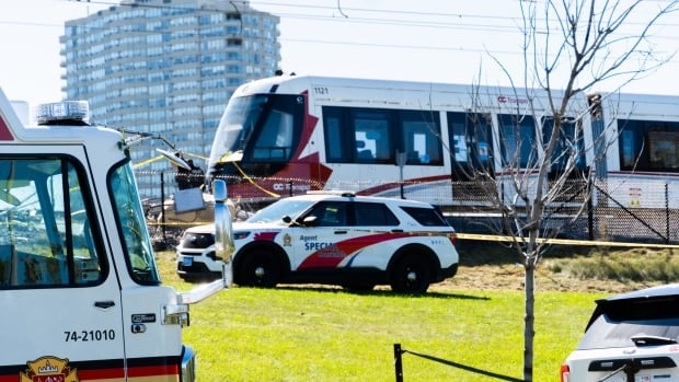 November LRT launch possible but will depend on details, says independent firm | CBC News