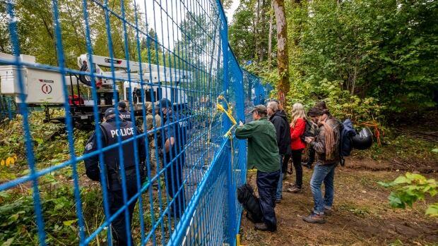Police in cherry picker remove, arrest anti-pipeline tree-sitter in Burnaby   CBC News
