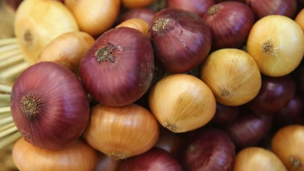 Whole raw onions recalled in Canada over link to U.S. salmonella outbreak