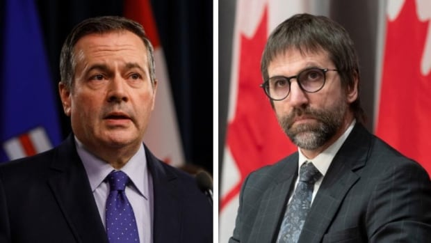 Kenney says longtime activist's appointment as environment minister sends 'very problematic' message | CBC News