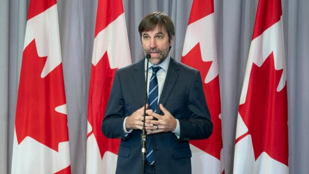 New environment minister downplays questions about past activism, says he has no 'secret agenda'
