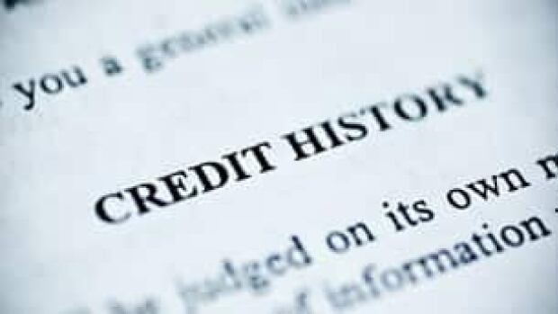 Credit monitoring companies such as Equifax and TransUnion offer consumers a peek at their credit histories.