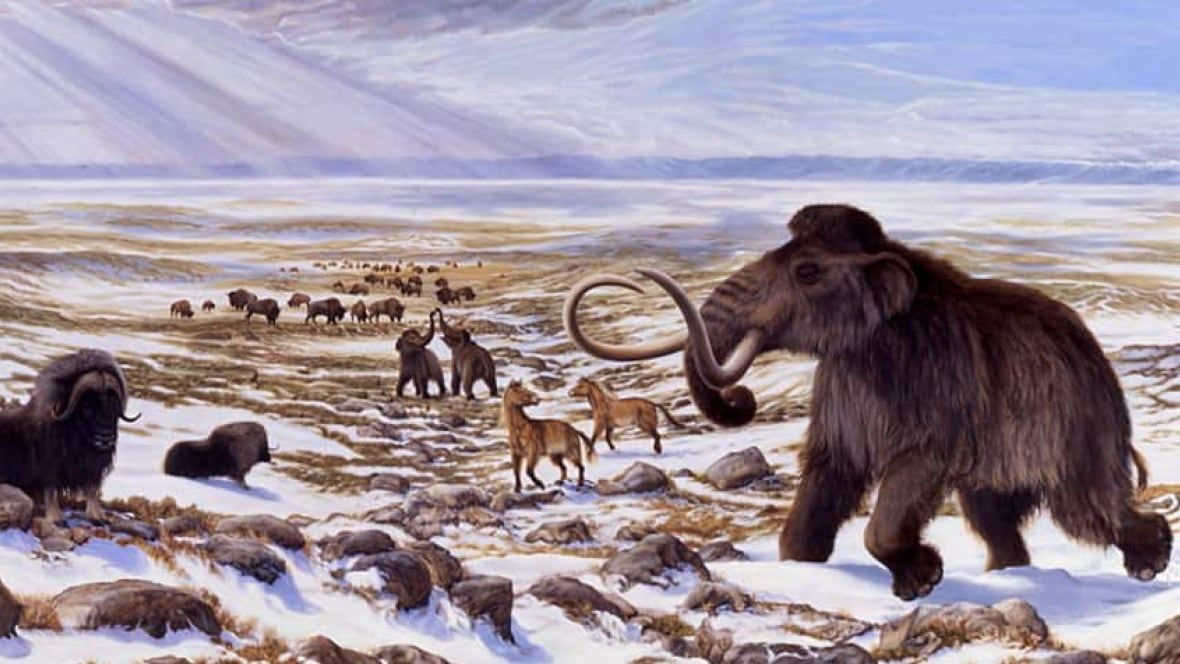 It's just a graphic of Magic Ice Ages Pictures